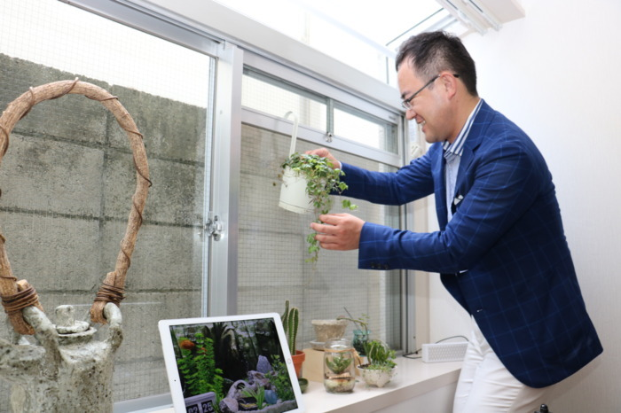 事務所内には趣味の多肉植物寄せ植え、テラリウムなどが並ぶ