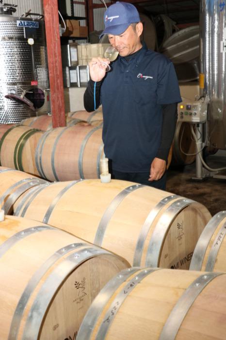 たるを使った白ワインの熟成状態をチェックする近藤さん