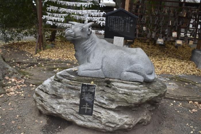 撫でれば災いをはらい、善いことを招くという撫牛=上野原市上野原の牛倉神社