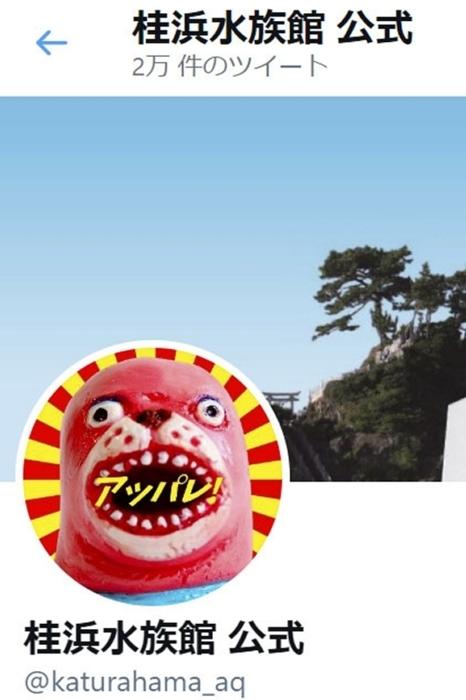 トドをモチーフとした公式キャラクター「おとどちゃん」がツイートする桂浜水族館の公式ツイッターの画面