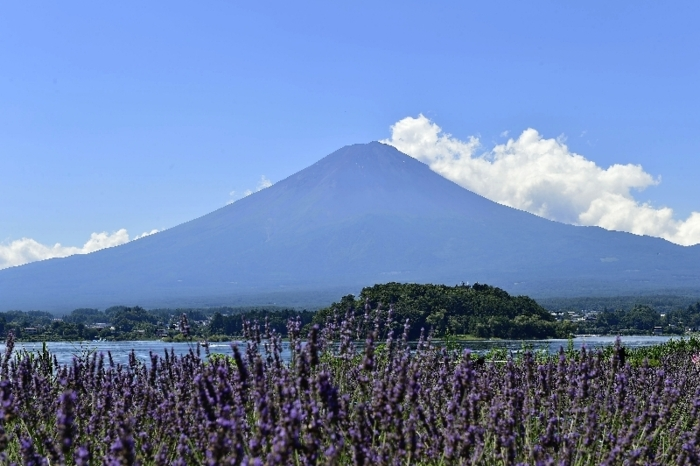 きょうの富士山(7月19日)