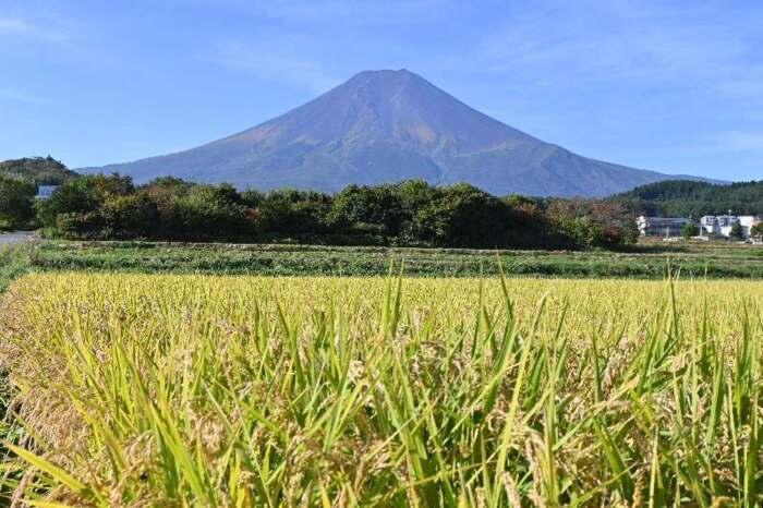 きょうの富士山(10月6日)